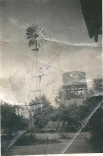 Joan Adams up a windmill - Boggabilla